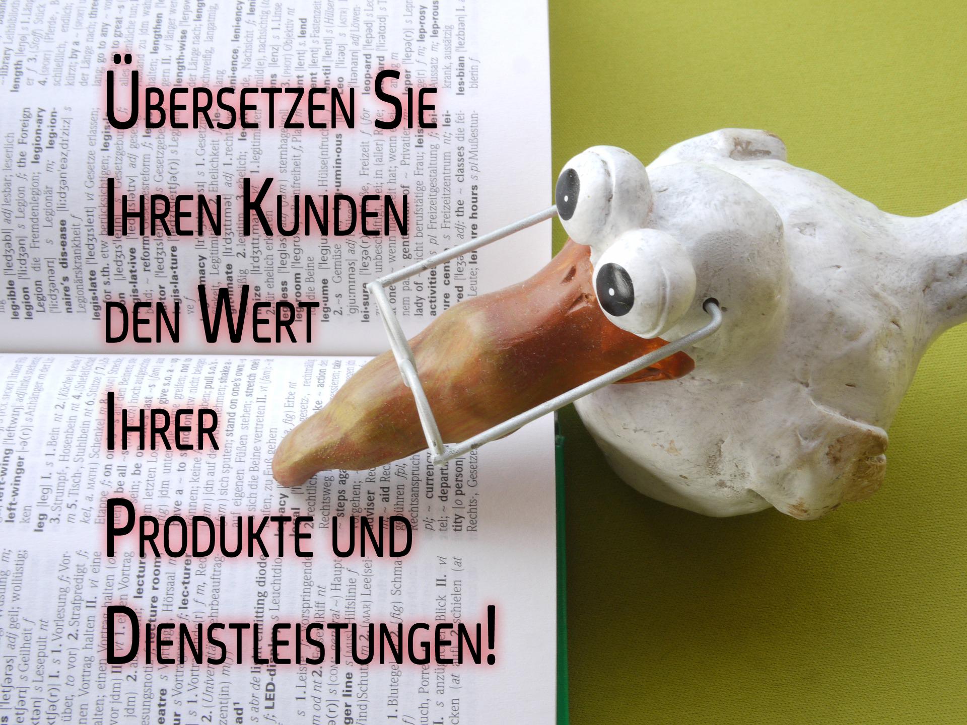 Sie müssen Ihren Kunden den Wert Ihres Produktes übersetzen!
