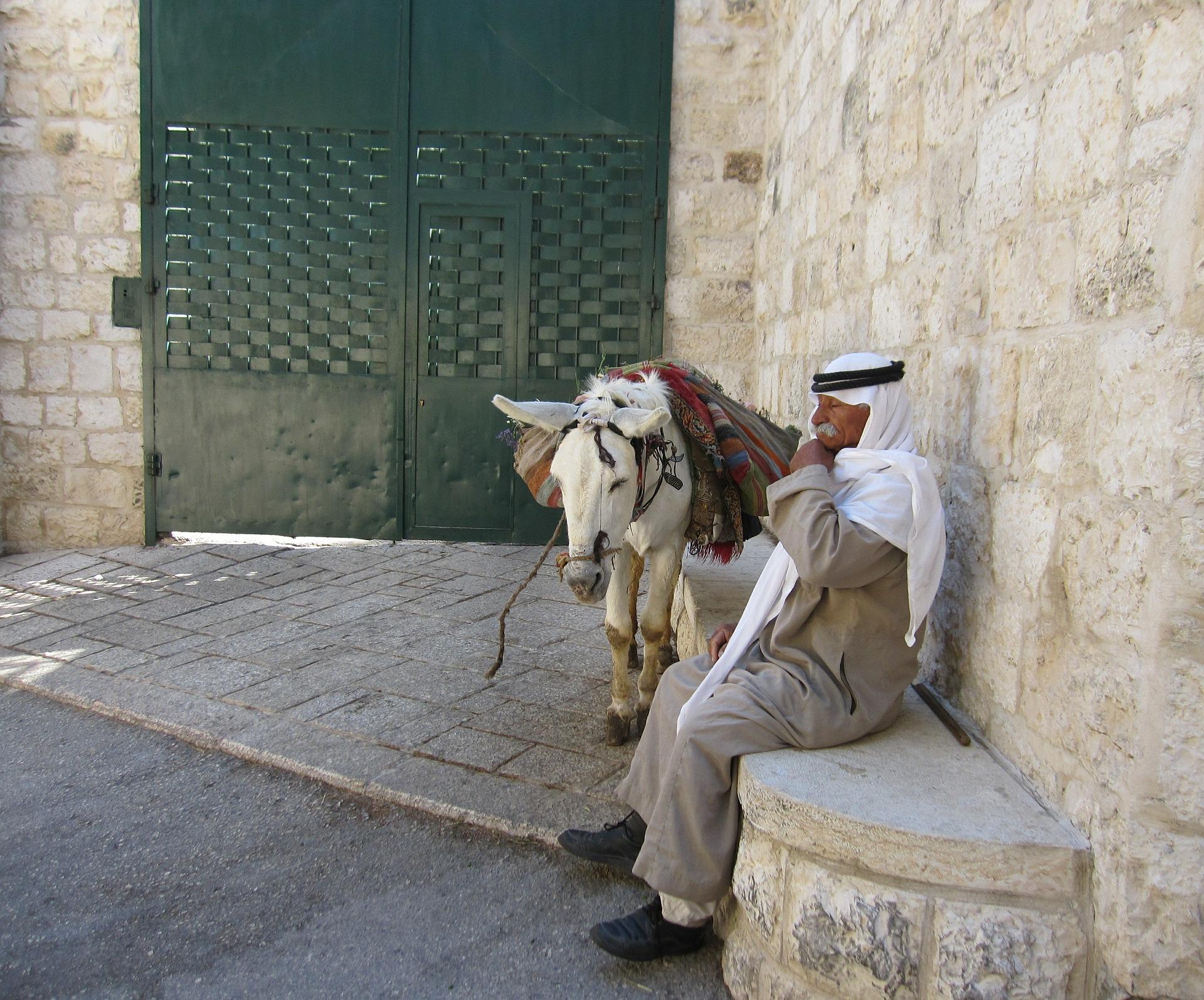 Der Alte Mann und der Esel